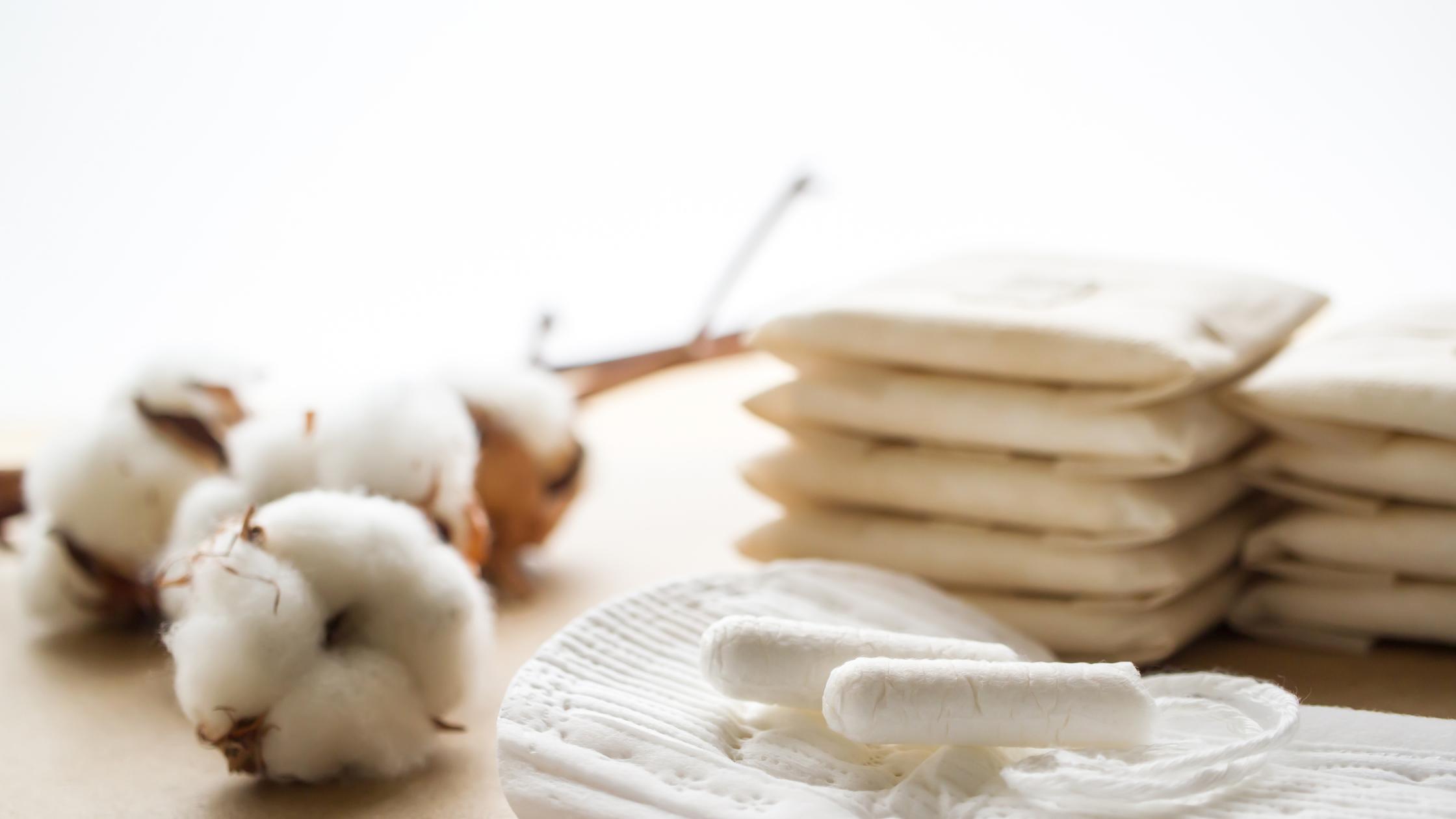 Menstrual Waste Management